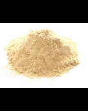 CZOSNEK SUSZONY MIELONY 100 g